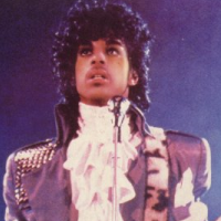 File:Crossfeature Prince.png